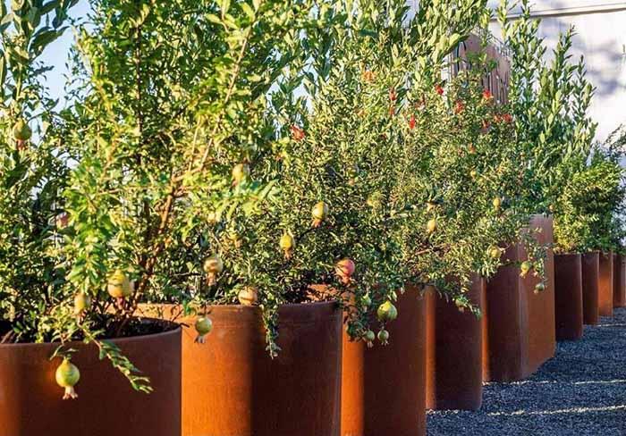 Corten Rusty Metal Planters