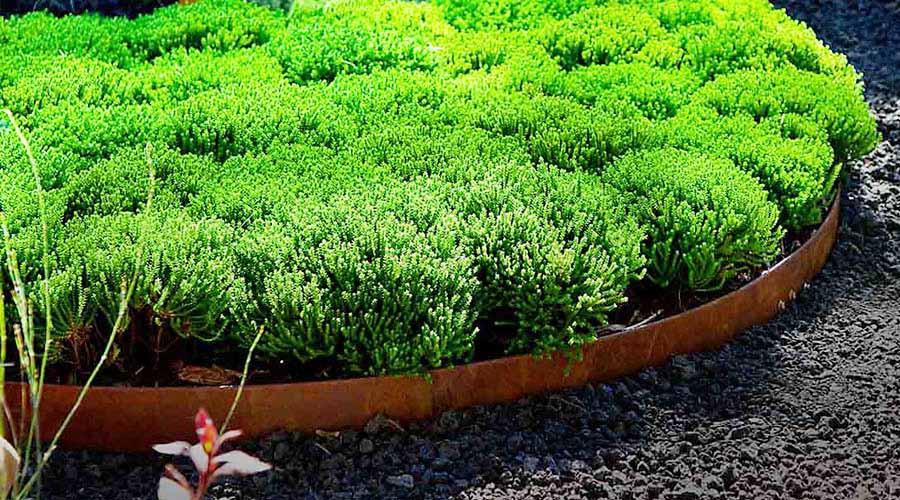 Corten Weathered Steel Garden Bed Edging Barrier
